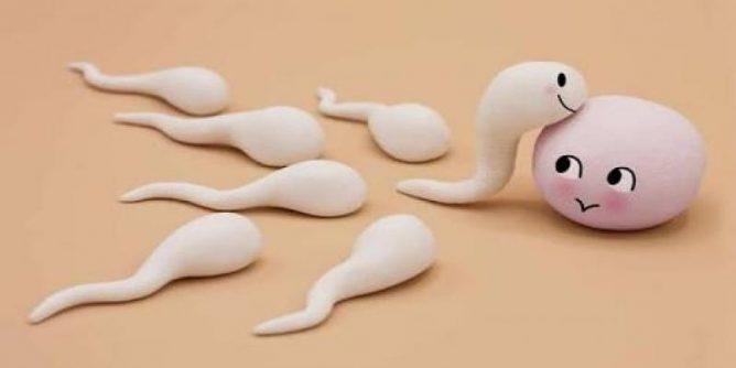 tips menjaga kesehatan sperma